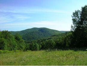 Bridgewater VT Land For Sale