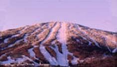 Land For Sale near Stratton Mountain