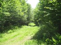 Canaan VT Land Real Estate