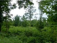 Coventry VT Land Real Estate