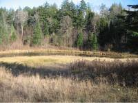 Greensboro VT Land Real Estate