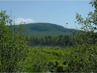 Lowell VT Land Real Estate