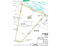 Morgan VT Land Real Estate