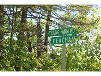 Peacham VT Land Real Estate
