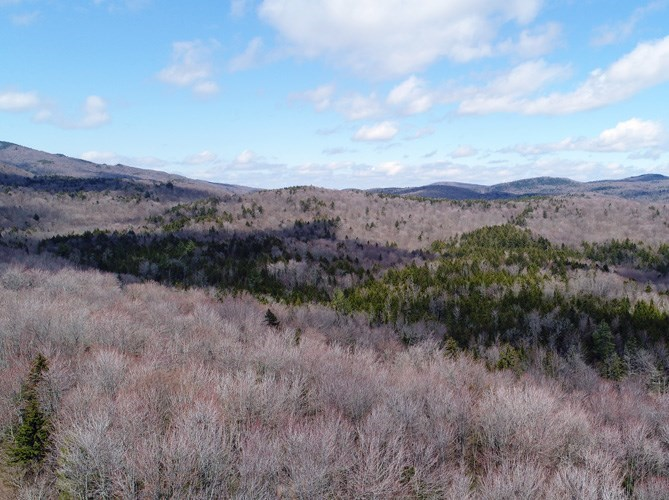 Waterbury, VT Recently Sold Homes l Green Light Real Estate
