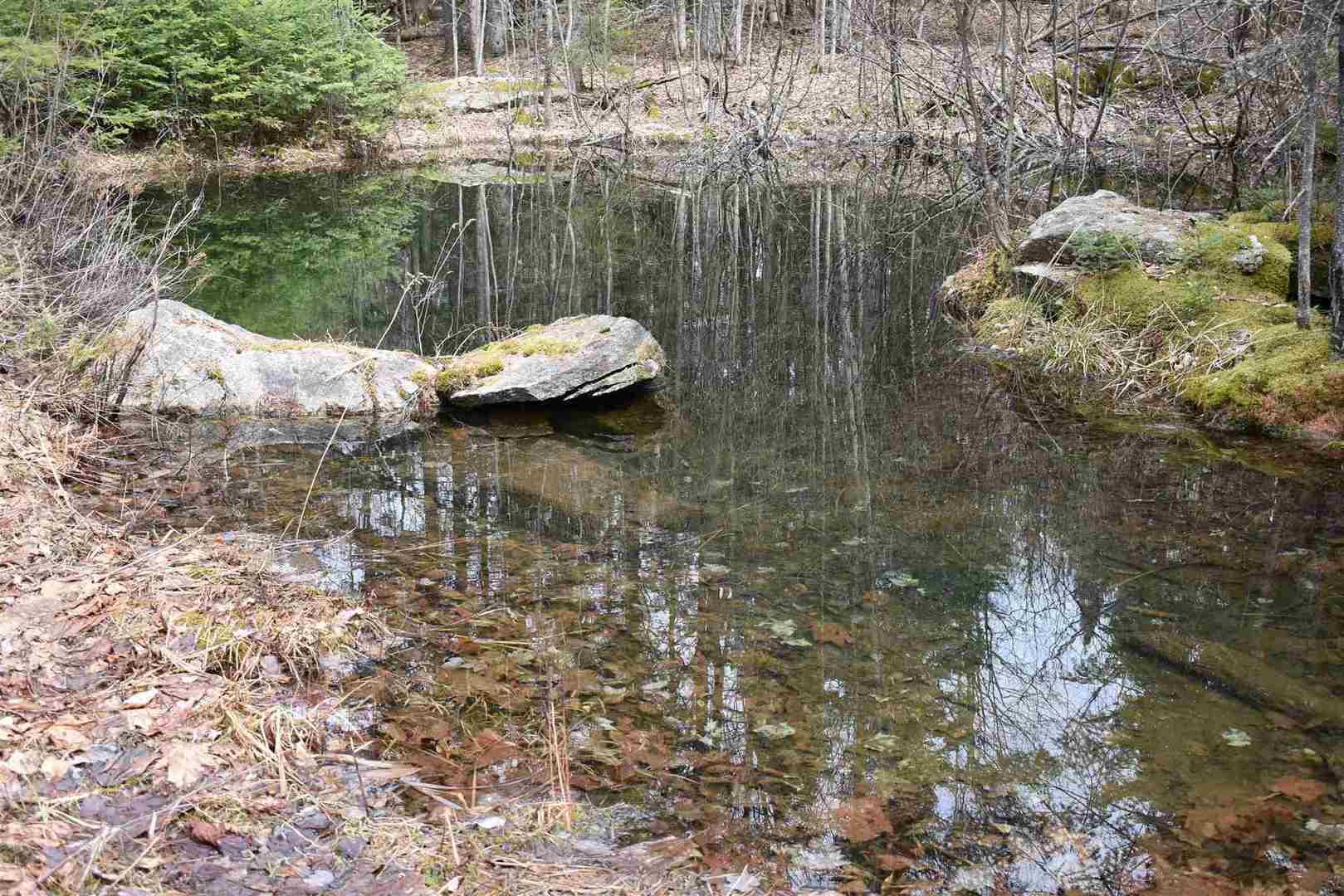 May Pond VT