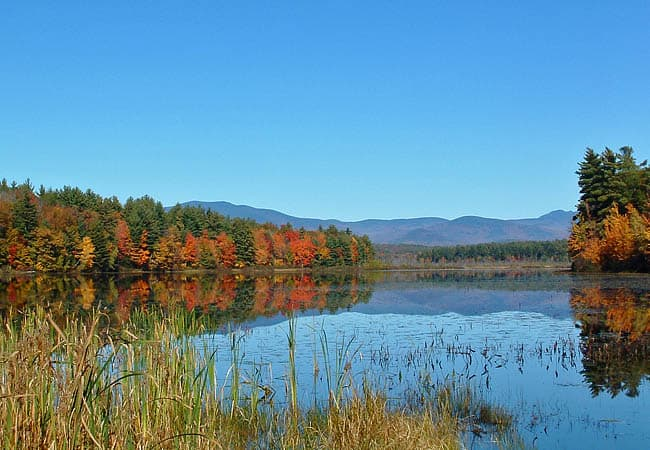 Berry Pond, NH