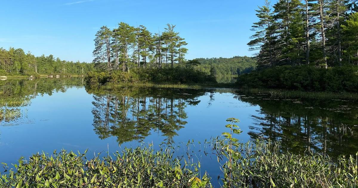 Chalk Pond, NH