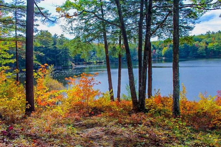 Randlett Pond, NH