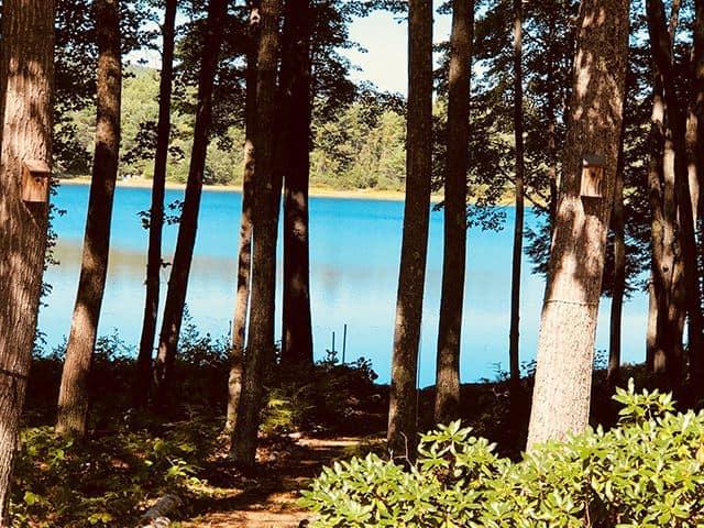 Sargents Pond, NH