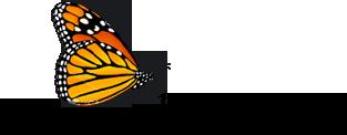 Monarch Realty Inc